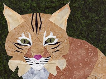 Big Cat Bobcat quilt pattern Shop Whims And Fancies Soma Acharya