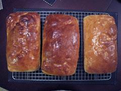 Simple Whole Wheat Bread Recipe