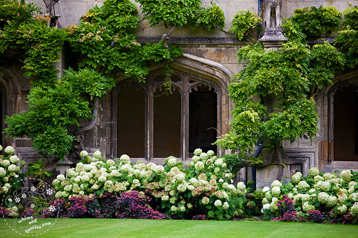 Magdalen College, Oxford England | Whims And Fancies