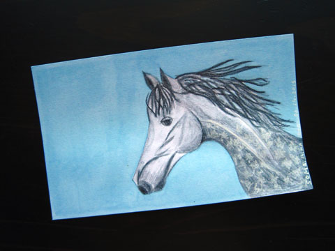 ICAD 2015 - Grey dapple foal | Whims And Fancies