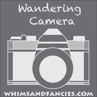 Wandering Camera Photo Linky Party