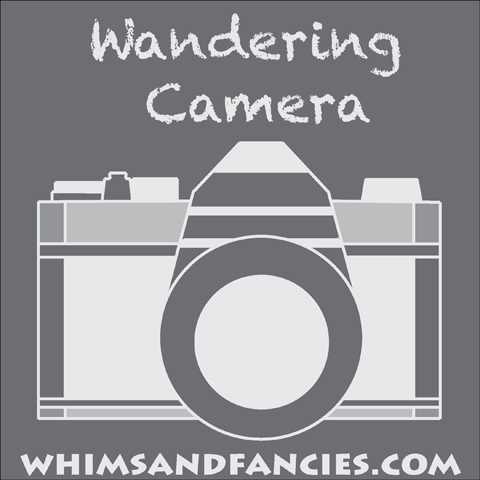 Camera And Photography Linky Party | Whims And Fancies