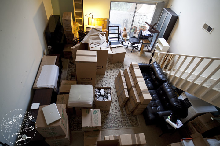 Moving Day | Whims And Fancies