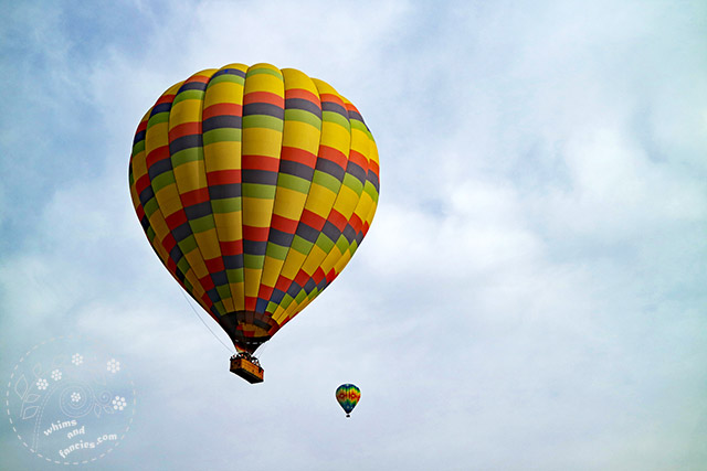 Hot Air Balloons Napa California | Whims And Fancies