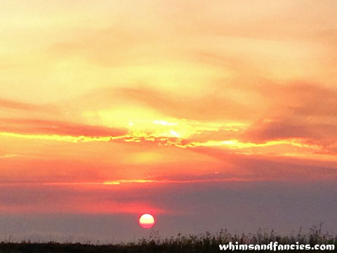 August Sunset | Whims And Fancies