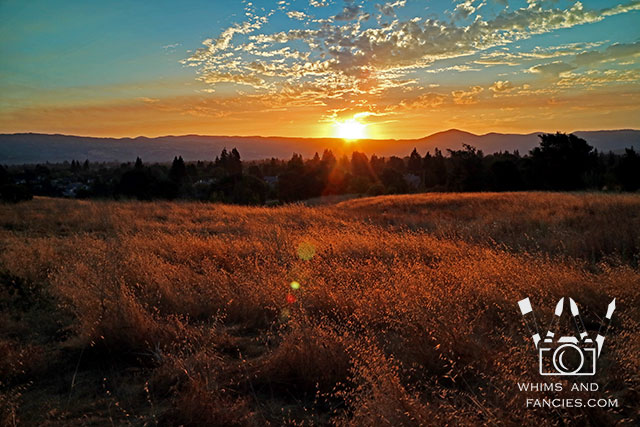 Sunrise In Northern California Wine Counntry | Whims And Fancies