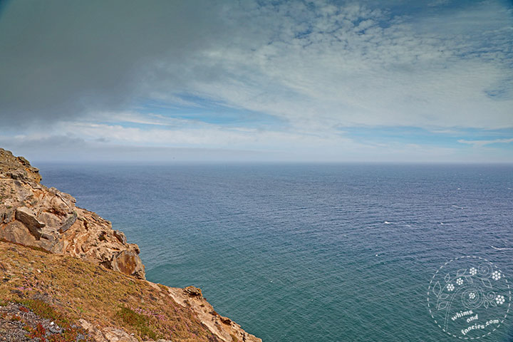 Point Reyes, California | Whims And Fancies