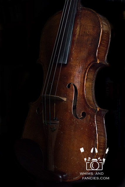 Violin | Whims And Fancies