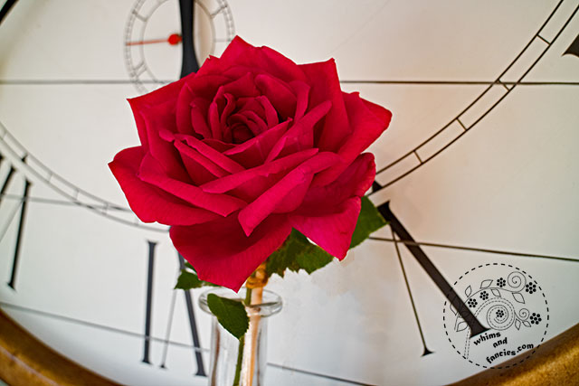 Solitary Rose And Ticking Clock | Whims And Fancies