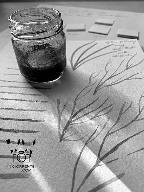 Botanical Ink Making Soma Acharya InkTorrents.com