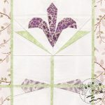 Kyanite Iris And Drawing Cards