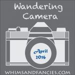 Wandering Camera – April Linky Party
