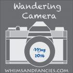 Wandering Camera – May Linky Party
