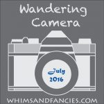 Wandering Camera – July Linky Party