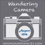 Wandering Camera – August Linky Party