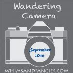 Wandering Camera – September Linky Party
