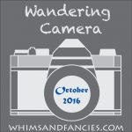 Wandering Camera – October Linky Party