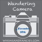 Wandering Camera – November Linky Party