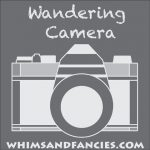 Wandering Camera – A Linky Party